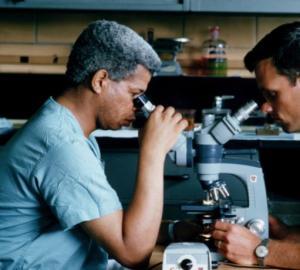microscope6399089